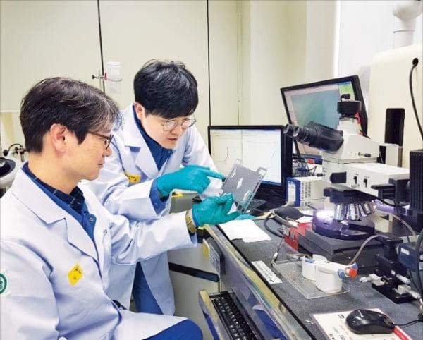 포스코 연구원들이 고내식 고전도 스테인리스강 'Poss470FC'를 살펴보고 있다.  포스코 제공