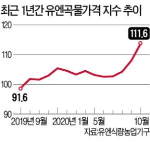 """세계 곡물값 폭등…""""기아 팬데믹, 코로나보다 두렵다"""""""