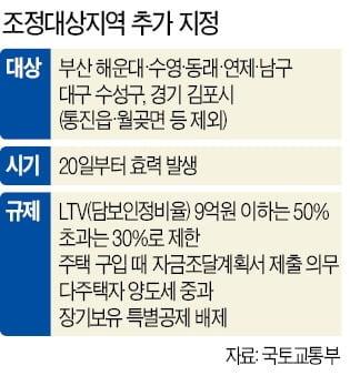 김포 묶이니 고양 '꿈틀'…김현미 아파트도 수천만원 뛰었다