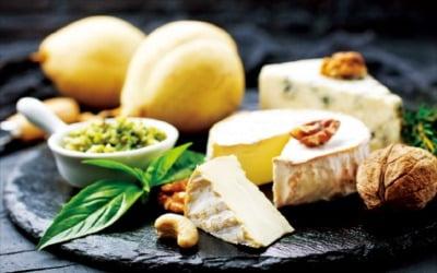 치즈의 기원이 낙타래…숙성감칠맛 vs 생치즈 신선한 맛