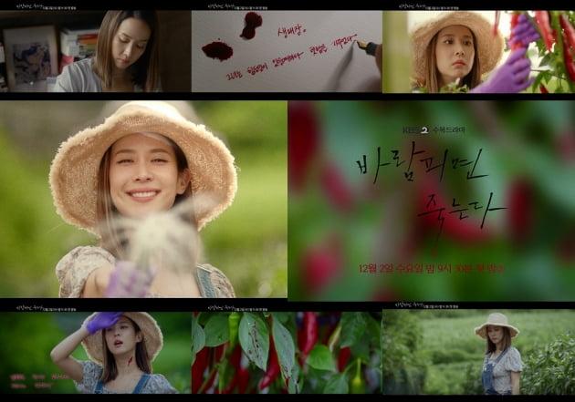 '바람피면 죽는다' 고추밭 티저/ 사진=KBS2 제공