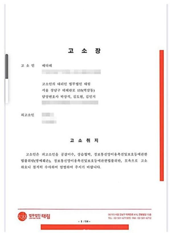 고소장 / 사진 = 배다해 인스타그램