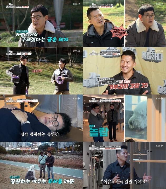23일 방송된 '개훌륭'/ 사진=KBS2 제공