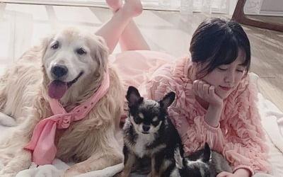 구혜선, 반려견 임종 앞두고 애틋한 가족사진