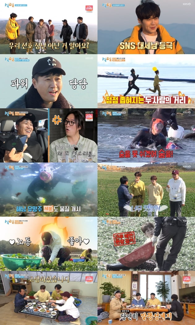 29일 방송된 '1박 2일 4'/ 사진=KBS2 방송 화면