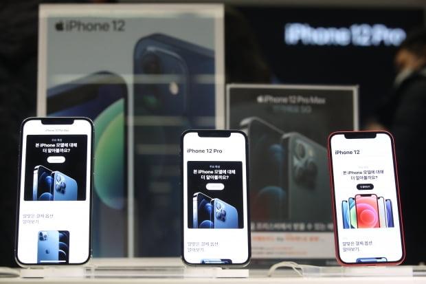 아이폰12 미니와 프로 맥스가 국내 정식 출시한 20일 서울 중구 프리스비 명동점에 기기가 전시되어 있다. /사진=연합뉴스