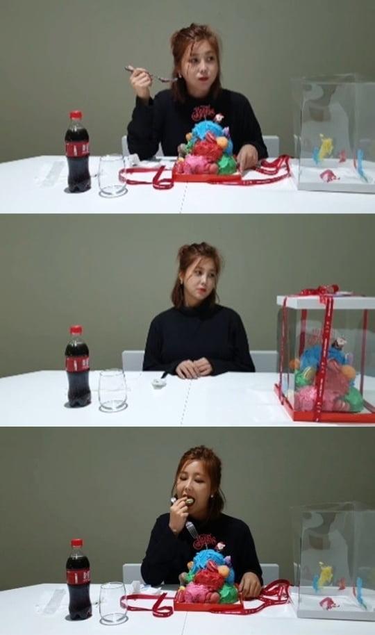 솔비, 케이크 표절 논란 해명 /사진=SNS