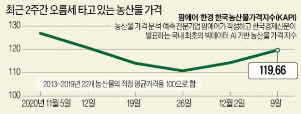'집밥' 늘자…오이·깻잎·상추값 20% 올라
