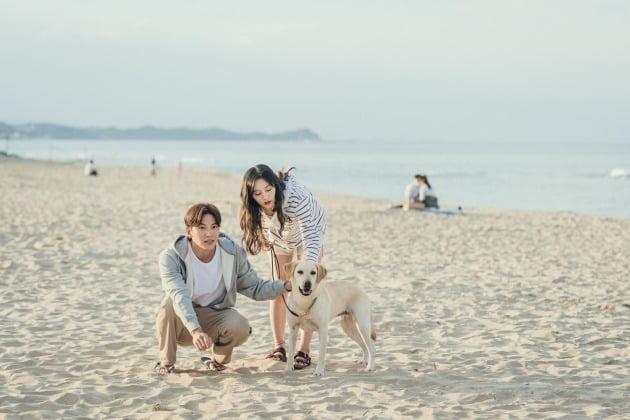 '도시남녀의 사랑법' 스틸 / 사진제공=넷플릭스