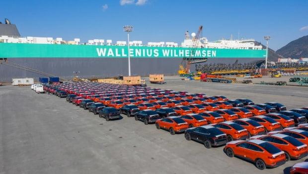 르노삼성자동차가 부산공장에서 생산된 XM3 750대를 프랑스, 독일, 이탈리아, 스페인 등 유럽 주요 국가에 처음으로 수출한다. 사진은 선적을 앞둔 XM3. 사진 = 연합뉴스