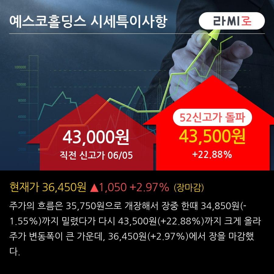'예스코홀딩스' 52주 신고가 경신, 주가 상승세, 단기 이평선 역배열 구간