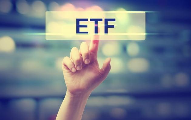 美 '블루 웨이브' 수혜 보려면…이 7가지 ETF에 올라타라