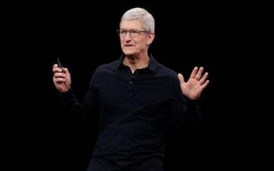 현대차 주가 들썩이게 한 애플 '중대발표' 뚜껑 열어보니…