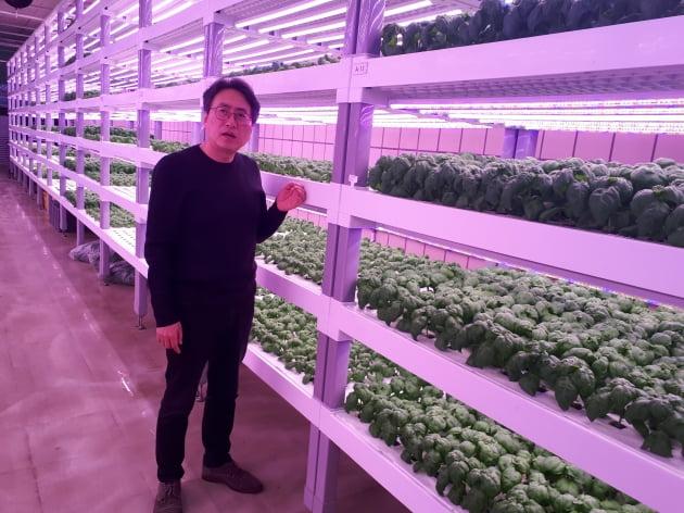 서울 상도역 실내수직농장 '메트로팜'에서 강대현 팜에이트 사장이 첨단 재배기술에 대해 설명하고 있다. 안대규 기자