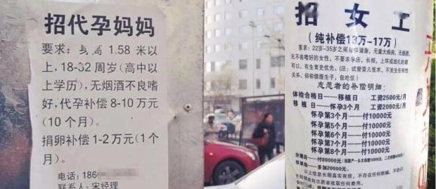 중국에서는 대리모 시장이 급성장하고 있다. 대리모를 모집한다는 전단지. 사진=바이두 캡처
