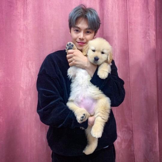 박은석 강아지 파양 의혹 /사진=인스타그램