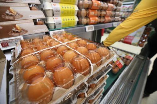 성수품 물량 더 풀고…계란값 잡고자 수입달걀에 '무관세'