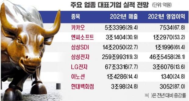 """작년 매출 신기록 쓴 카카오·엔씨…""""올해 더 좋다"""""""