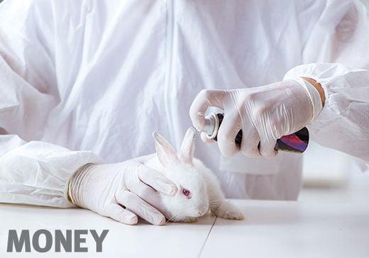 번식력이 좋고 가격이 싼 토끼와 쥐와 같은 설치류들은 화장품 실험에 가장 많이 희생되는 종이다. 크루얼티-프리 제품들을 인증하는 마크에 토끼가 가장 많이 그려진 이유다.