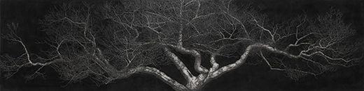 매화-달빛, 캔버스에 목탄, 227×910cm, 2016년, 작가 소장