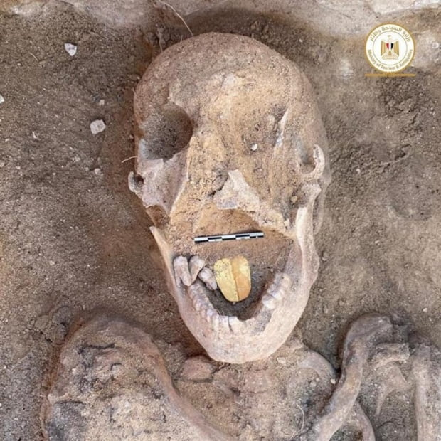 이집트 유물부가 타포시리스 마그나라는 고대 이집트 유적지에서 금 혀를 가진 2000년 된 미라를 발견한 모습. 사진 출처=이집트인디펜던트