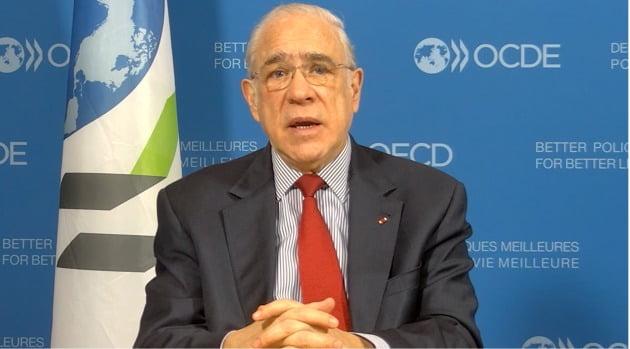 """OECD 사무총장 """"코로나로 한국 큰 타격…선별 지원금이 타당""""[인터뷰 전문]"""