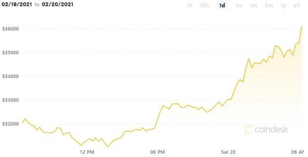 19일(현지시간) 비트코인 가격이 5만6000달러마저 돌파했다.  /코인데스크 캡처
