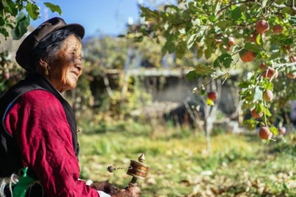 中 공산당 목표는 식량 자급…알리바바·화웨이가 총대 멘다 [강현우의 중국주식 분석]