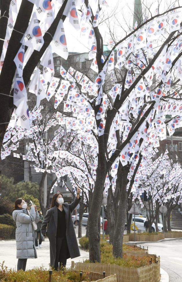 효창공원에 등장한 태극기가로수