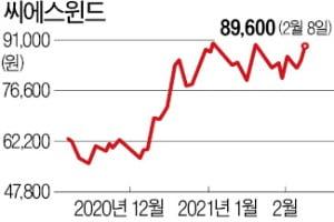 """""""48조 신안해상풍력"""" 발표에…씨에스윈드, 장중 29% '들썩'"""