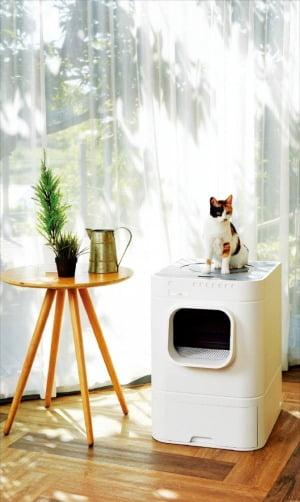 현대렌탈케어, 고양이 배설물 자동으로 처리…반려동물 렌털상품 시장 공략