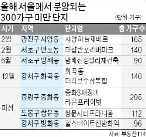 """""""서울 대단지는 부담""""…바로 옆 '나홀로 아파트' 찾는 사람들"""