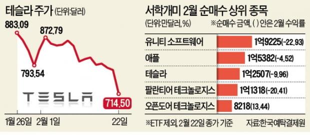 테슬라·팔란티어, 줄줄이 급락…서학개미들 '잠 못 이루는 밤'