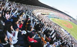 2011 프로야구 개막 이틀째인 3일 오후 서울 잠실야구장을 찾은 수많은 관중들이 열렬히 응원하고 있다./2011.04.03  ........
