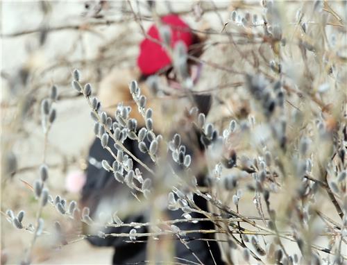 [사진톡톡] 봄이 오는 소리