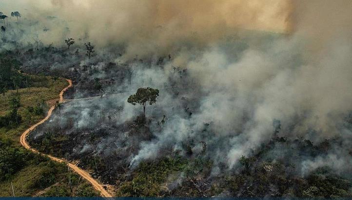 '아마존 보호 기금' 파행시킨 브라질, 선진국에 재정지원 요구