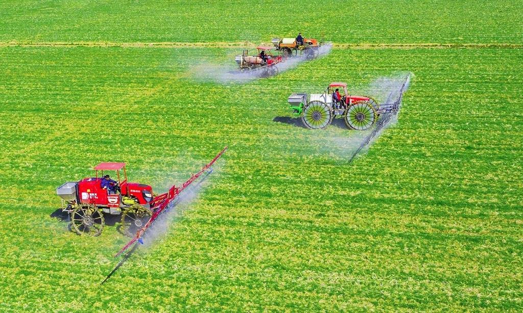 중국, 올해도 1순위는 '농촌 활성화'…18년째 주요 의제 채택