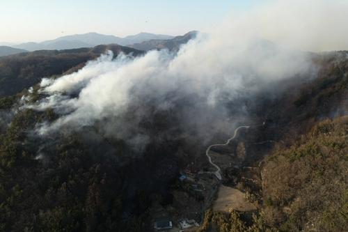 영동 매곡 산불 진화…17시간 동안 산림 20㏊ 태워(종합)