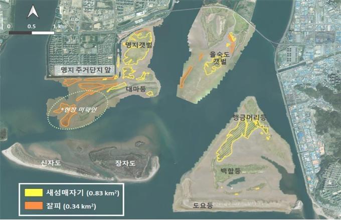 천연기념물 낙동강 하구 지형·식생변화 드론으로 관찰