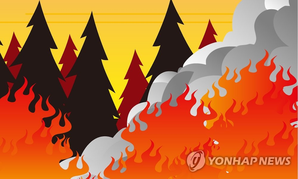 양양 사천리 창고서 불…인근 산으로 번져