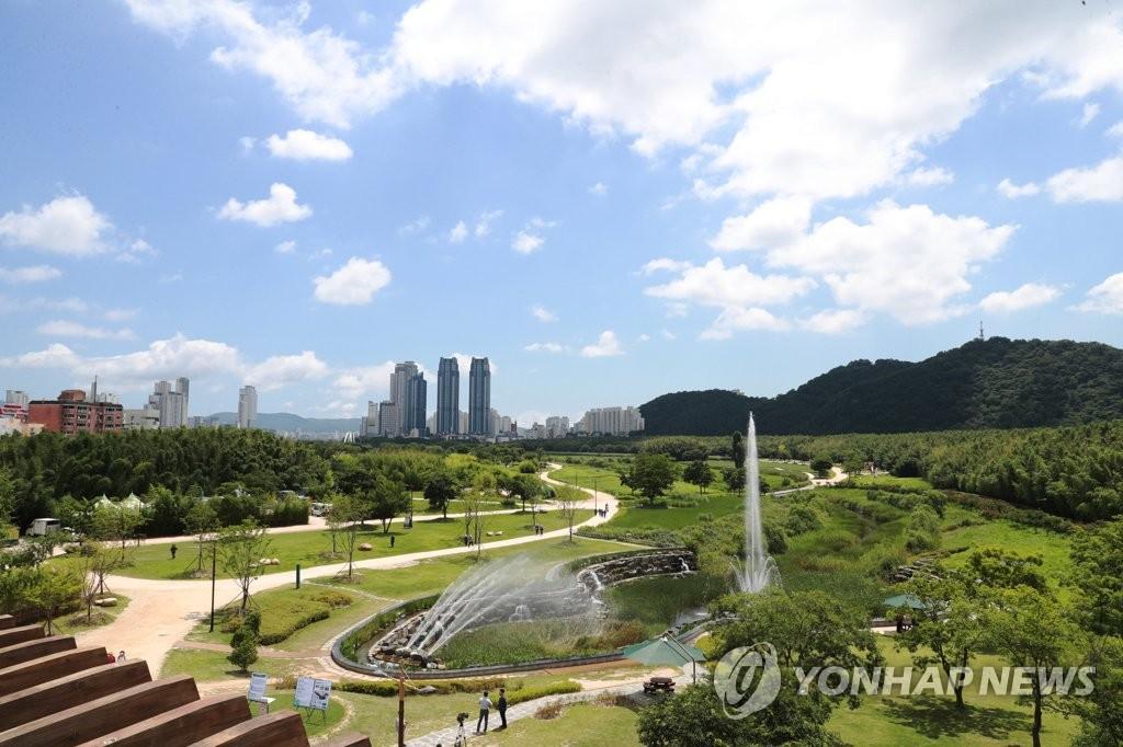 도심 녹지 태화강국가정원·울산대공원 '피톤치드 농도' 높아