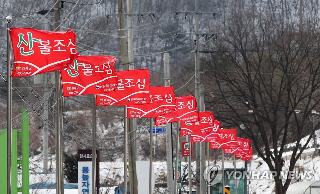강원 동해안·산지 건조특보에 강풍…산불 '비상'