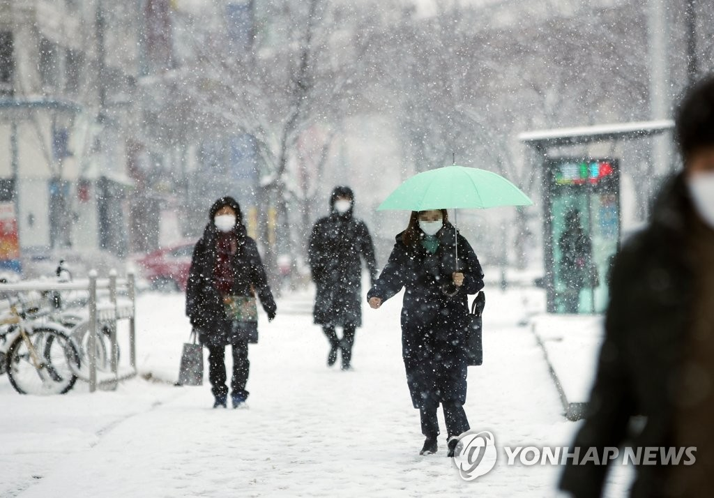 나주 8.9㎝ 눈…광주·전남 출근길 '거북이걸음'(종합)