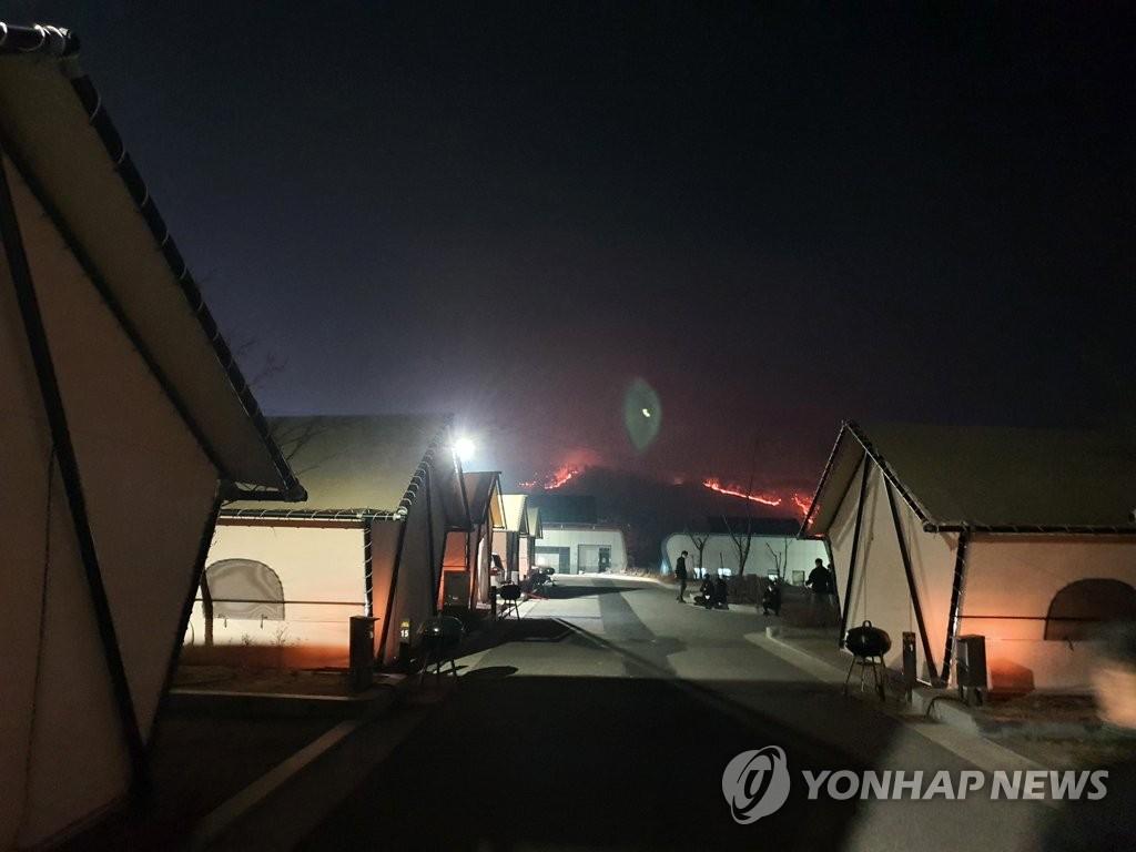 [고침] 지방(안동·예천 산불로 255ha 소실…축구장 357개…)