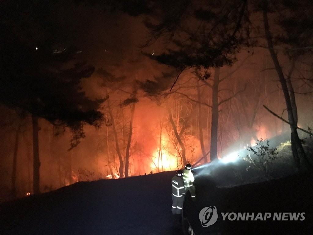 """산림화재 10건 중 6∼7건은 봄철에 발생…""""봄철 산불 조심"""""""