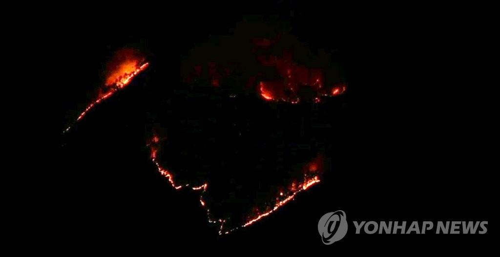 충남 논산 야산 불로 주민 한때 대피…14시간 만에 진화(종합)