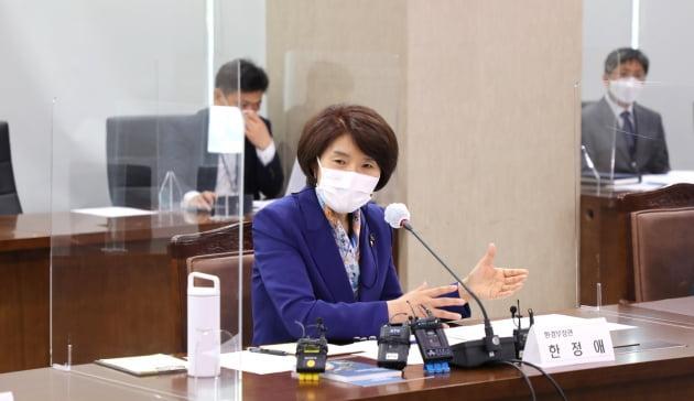 한정애 환경부 장관이 10일 정부세종청사에서 기자간담회를 갖고 각종 환경현안을 설명하고 있다. 환경부 제공
