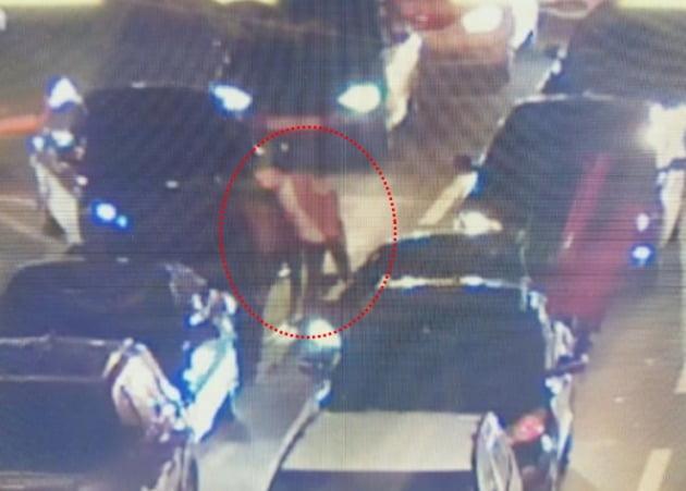 사진=피해 주장 남성이 공개한 CCTV 화면