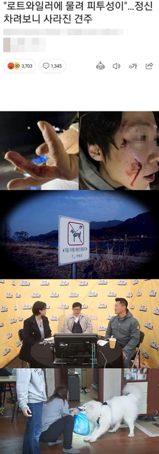 개훌륭 개물림 사고(사진= KBS2 '개는 훌륭하다', 강형욱 개인 SNS)