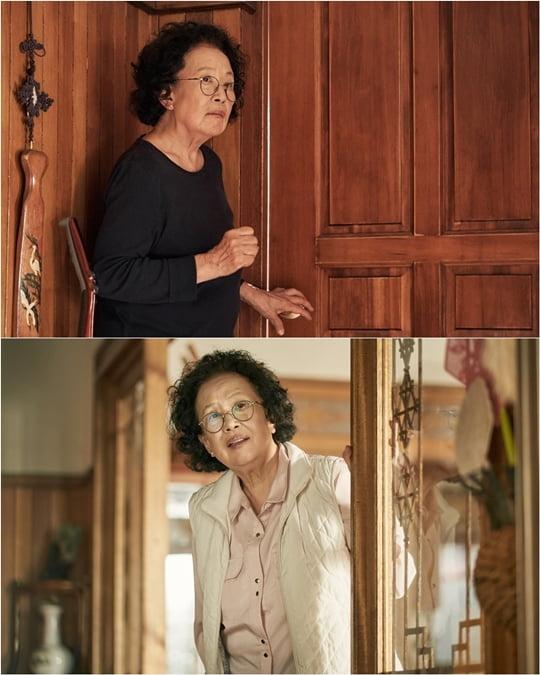 나빌레라 나문희(사진= tvN '나빌레라')